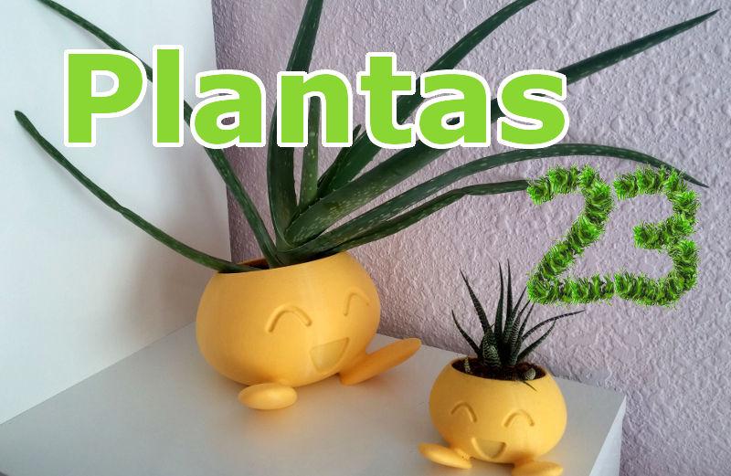 Imagen de Plantas23.com